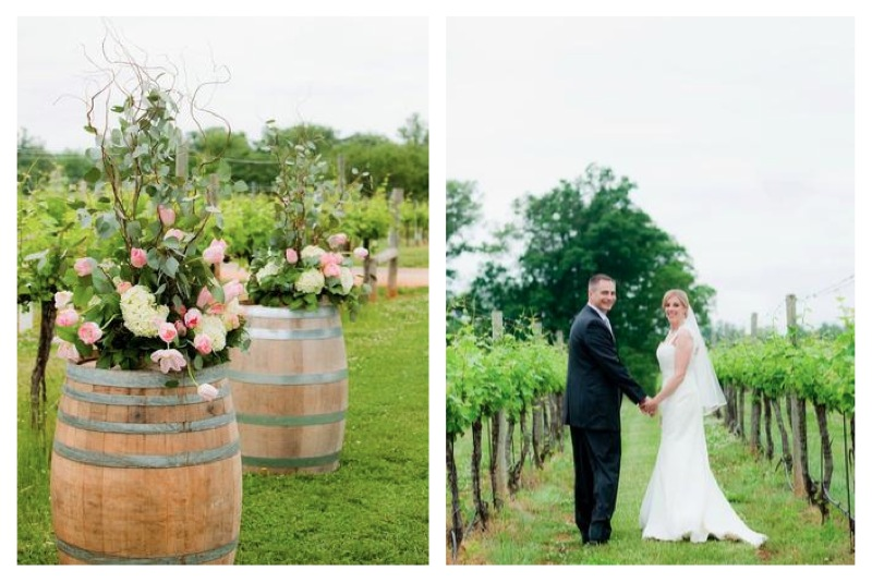Charlottesville Wedding Keswick Vineyards Vines
