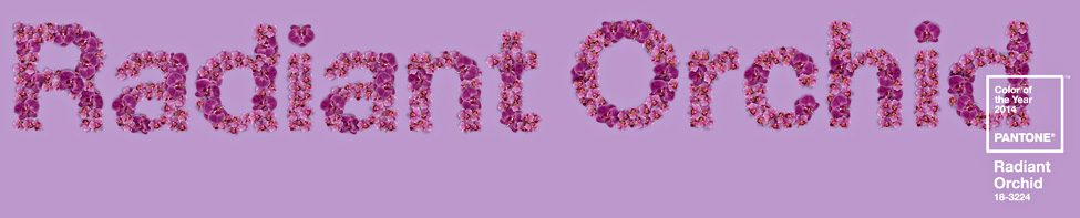 Pantone Color of the Year Radiant Orchid 2