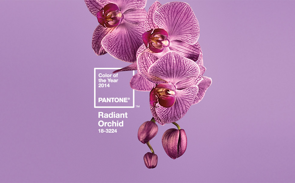 Pantone Color of the Year Radiant Orchid banner