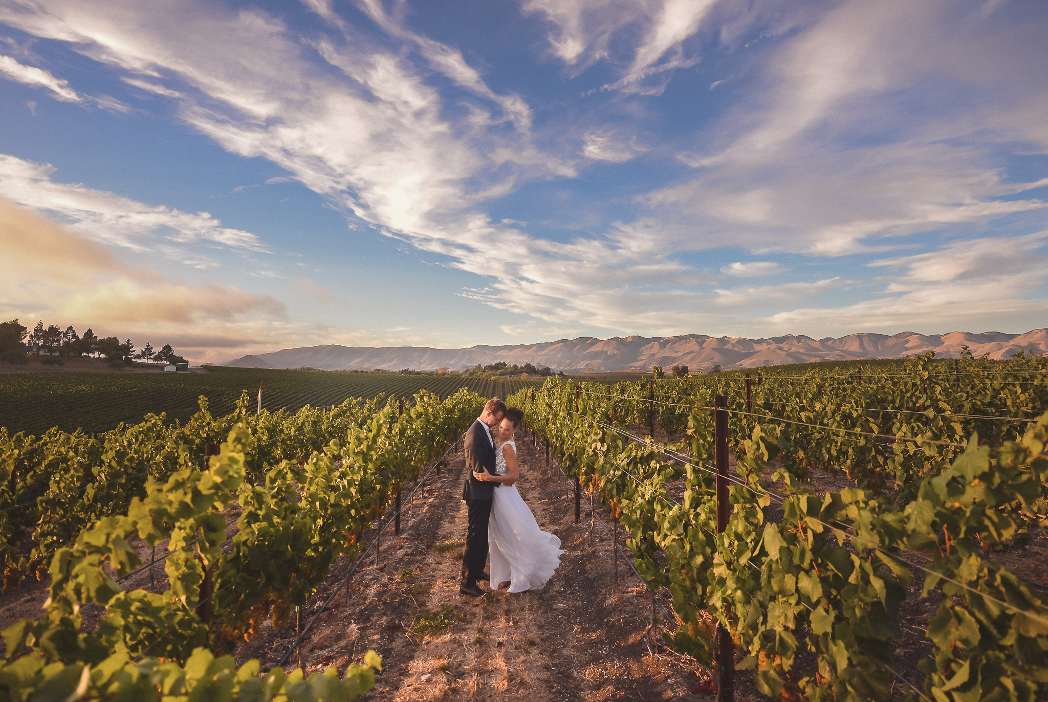 Sneak Peek: K+S Greengate Ranch & Vineyard Wedding in San Luis Obispo, CA