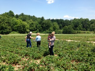 Berry Picking at Butler's Orchard