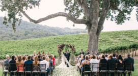 M&C Wine Country Wedding